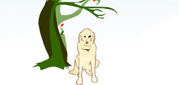 hill&knowlton flash animatie en illustraties