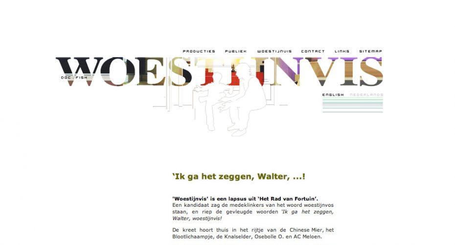 webdesign BALLYHOO Leen de Smedt - WOESTIJNVIS website